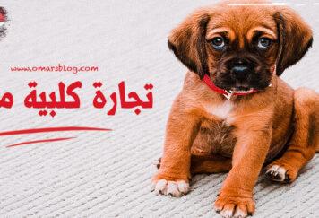 صورة كلب